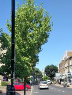 6 Great Things on Putney's Upper Richmond Road