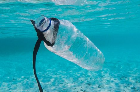 Tackling plastic pollution in Putney